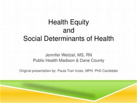 Health disparities research paper